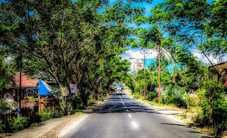 A rural road in small town Indonesia through a tunnel of trees. Orton Effect Road Rural Scenes Tunnel Of Trees Building Exterior Built Structure Day Growth Indonesia_photography Nature No People Outdoors Residential Building Road Rural Landscape Rural Scene Sky Street The Way Forward Tree Trees And Sky