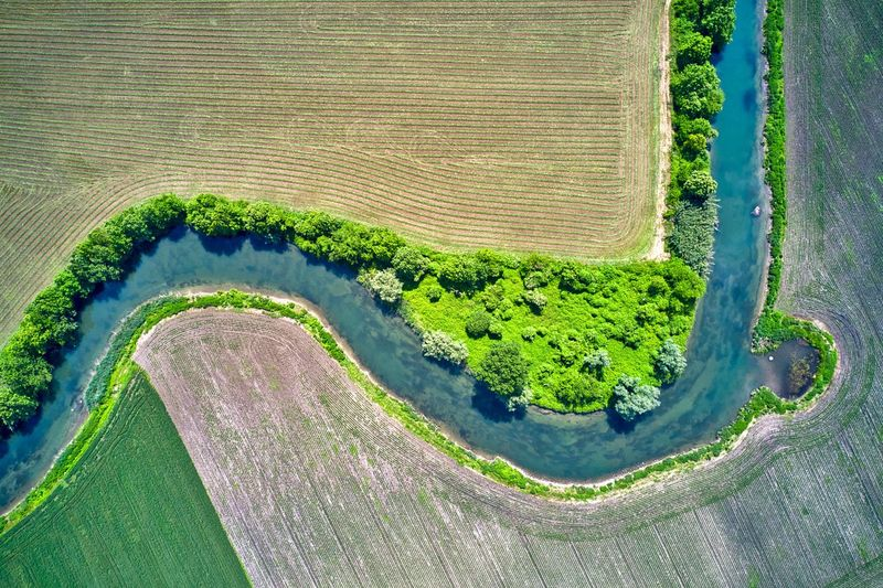 Italy, Mantua: river Mincio Natural Park, fields and Mincio river Agriculture Bend Color Green Day Day Light Day Time Daylight Daytime Drone  Field From A Distance From Above  High Angle View Horizontal Italy Landscape Landscapes Lines Looking Down Mantova Mantua Mincio Nature No One No People Nobody Outdoor Outdoors Outdoors Parallel River Spring Spring Season Springtime Tracks Vegetation Water Aerial View Drone Photography Crop  Green Color Environment Scenics - Nature Land Beauty In Nature Growth Tranquil Scene Plant Rural Scene Natural Park