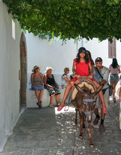 Tourist Attraction  Day Domestic Animals Donkey Rides Full Length Greece Leisure Activity Lifestyles Lindos Lindos Greece Mammal Medium Group Of People Men Outdoors Real People Sitting Togetherness Tree Women Young Adult Young Women Summer Road Tripping