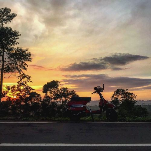 Tree Sunset Transportation Silhouette Orange Color Road Sky Atmospheric Mood Beauty In Nature Outdoors Dramatic Sky Cloud - Sky Nature Piaggio Vespa Vespagram Piaggio Vespavintage Vespa Tranquility Tranquil Scene Vibrant Color Vespalovers Cloudscape Sun Cloud