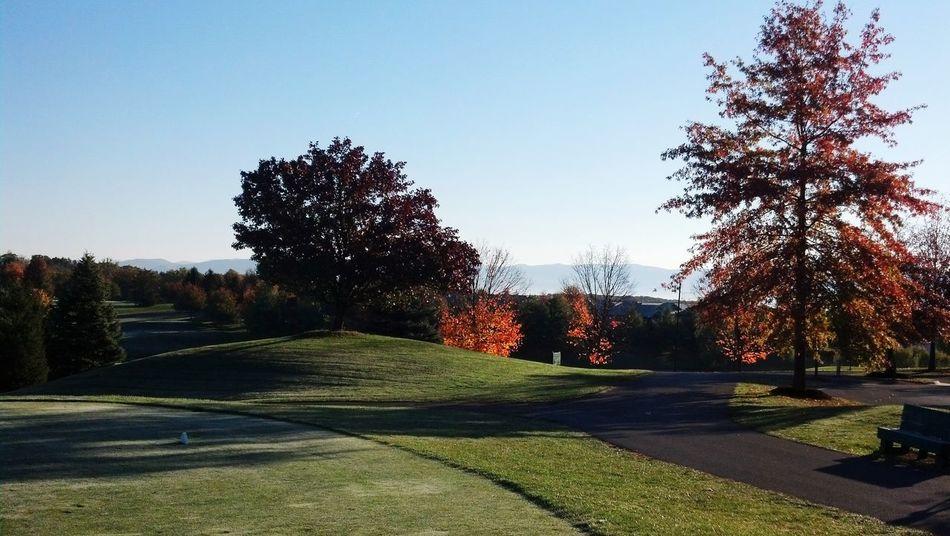 vacation Golf ⛳ Resort Massanutten Green Fall Colors