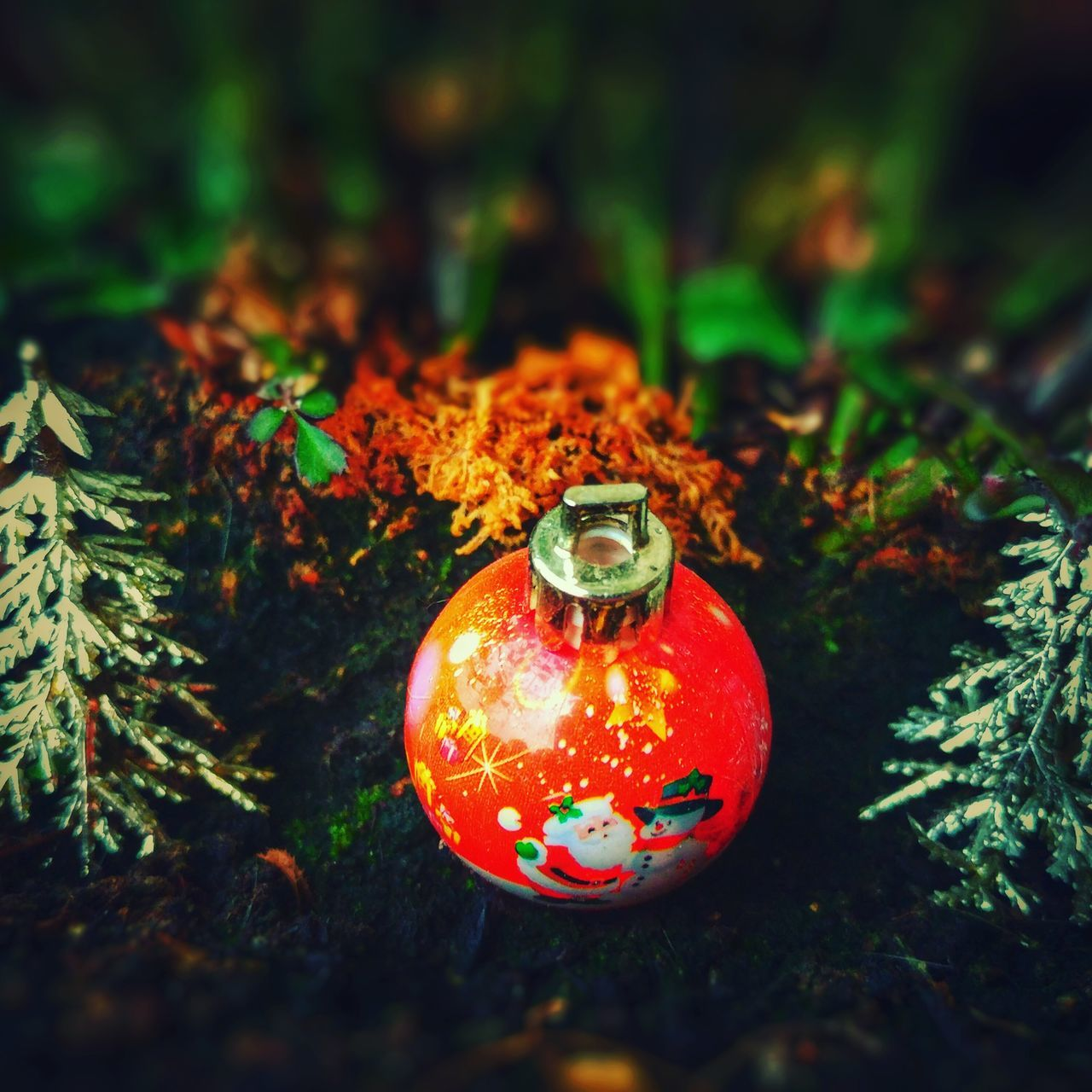 celebration, christmas decoration, christmas, no people, tradition, christmas ornament, close-up, focus on foreground, christmas tree, red, outdoors, holiday - event, bauble, day, nature