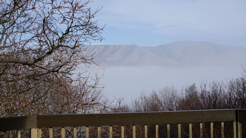 Utah Mountains Fog In The Trees Lanscape Photography Utah Pineview Dam Huntsville Foggy Morning Bare Trees Foggy Lake Beauty In Nature Mountain Looking Down On The Clouds Cloud - Sky Water Mountain Range