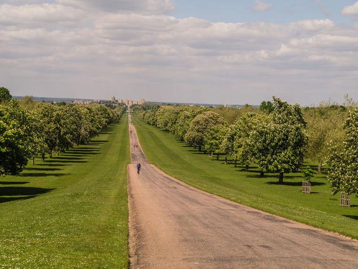 Long Road Amidst Trees Leading Towards Windsor Castle Against Sky