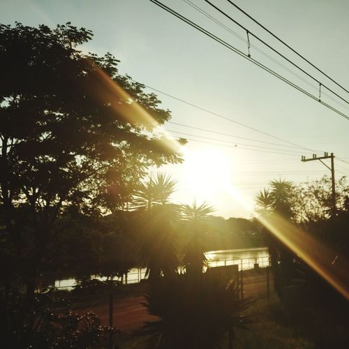 Sun EyeEmNewHere Day Tree Sunset Water Cable Silhouette Sunlight Telephone Line Sky