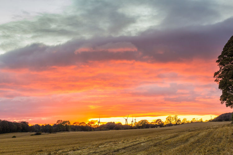 Photo from my new video and you can find it here - https://youtu.be/tC7EWpVkZKM Agriculture Beauty In Nature Cloud - Sky Dramatic Sky Field Landscape Nature No People Outdoors Rural Scene Scenics Sky Storm Cloud Sunbeam Sunset Tree Vibrant Color