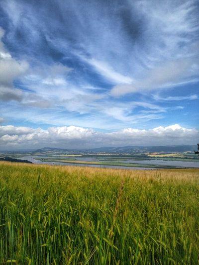 LandscapeLandscape .What a view!