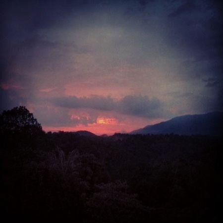 Nature is calling. What a sunset. Malaysia2014 Malaysia Kualalumpur Kl Gambang Travelasia ASIA Sun Sunset Forest TourismMalaysia Tourismkl Exploremalaysia Explorekualalumpur Nature Instanature Natureporn MALAYSIATRIP2014 Sunsout Goasia Exploreasia SEAsia Southeastasia Pictureoftheday Picoftheday