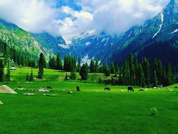 Grass Mountain Beauty In Nature Mountain Range Scenics Day Cloud - Sky Tree EyeEmNewHere