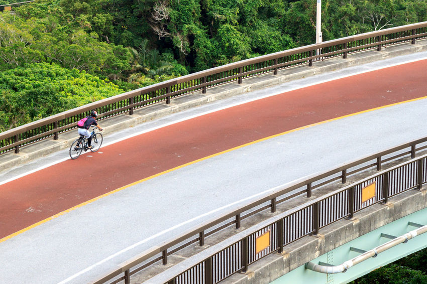 Cyclist going down a steep highway Copy Space Cyclist Architecture Bicycle Bridge Connection Day Land Vehicle Men Mode Of Transportation Nature Outdoors People Plant Railing Real People Ride Riding Road Transportation Travel Tree