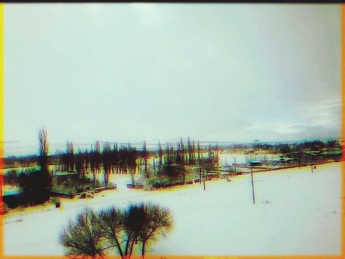 First Eyeem Photo Winter Winterland Sky Clouds Snow Snow ❄ Tree Turkey
