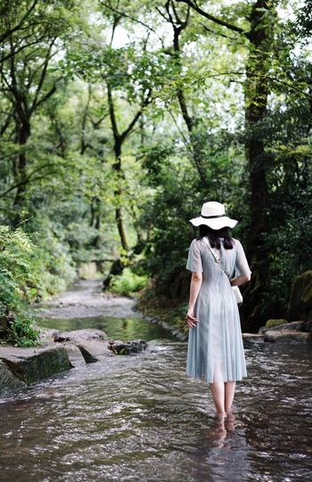 ThatsMe Hiking Weekend Back View One Person Water Plant Tree Forest Walking Dress Leisure Activity Outdoors