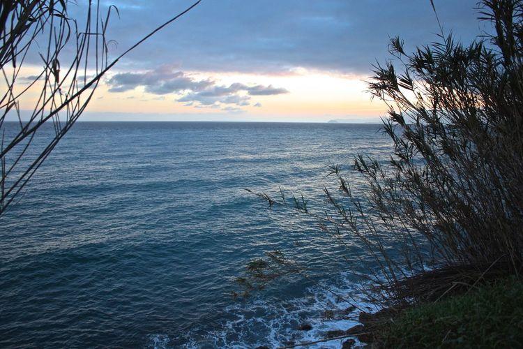 Il mare dalla Cava di Ghigliazza