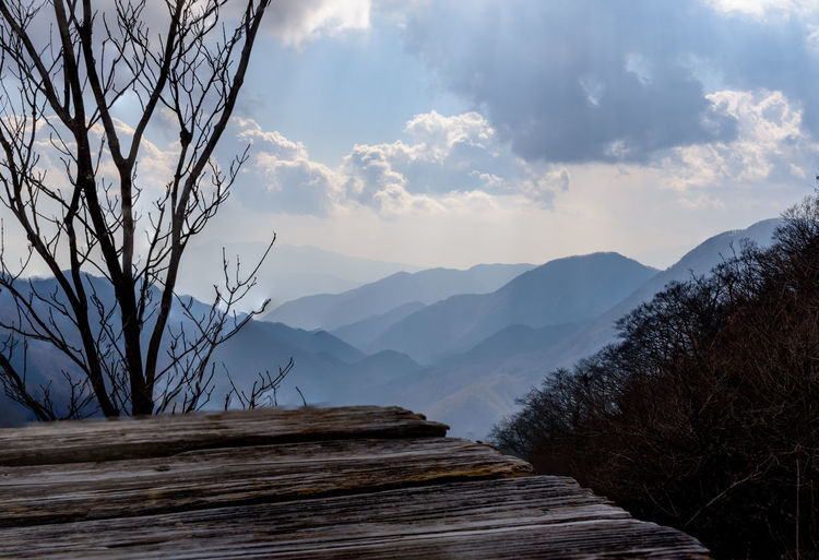 Mountain Sky Cloud - Sky Scenics - Nature Tranquility Tranquil Scene Beauty In Nature Nature Tree Direction Wood - Material Plant Mountain Range Environment Landscape Non-urban Scene The Way Forward No People Outdoors