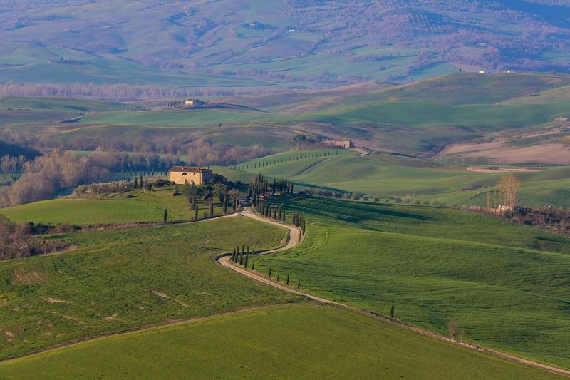 Toscana Italy Enjoying The Sun Morning Traveling Sun Things I Like Sunny Sunny Day Beautiful Day Colors Green Beautiful Beautiful Nature Landscape Landscape_Collection Nature Nature_collection Nature Photography Travel Photography Travel Landscapes With WhiteWall House Villa Showcase April