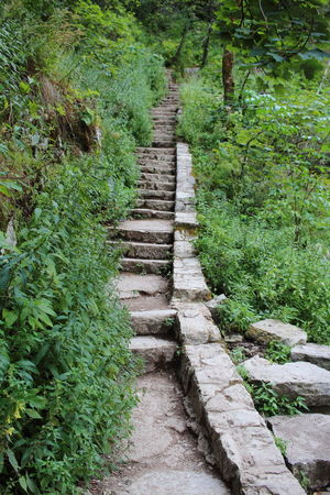 Croatia Djmarcop Trip No People The Way Forward Tranquil Scene Beauty In Nature Tranquility Outdoors Scenics Plant Growth Green Color Nature Steps Day Tree