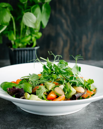 Beans and greens salad with pea sprouts and basil. Bowl Close-up Focus On Foreground Food Freshness Green Green Color Growth Healthy Eating Leaf Nature No People Organic Plant Ready-to-eat Salad Selective Focus Served Serving Size Still Life Vegan