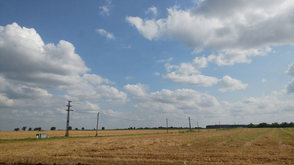 Hungarian Great Plains Puszta Plain Countryside Country Country Living