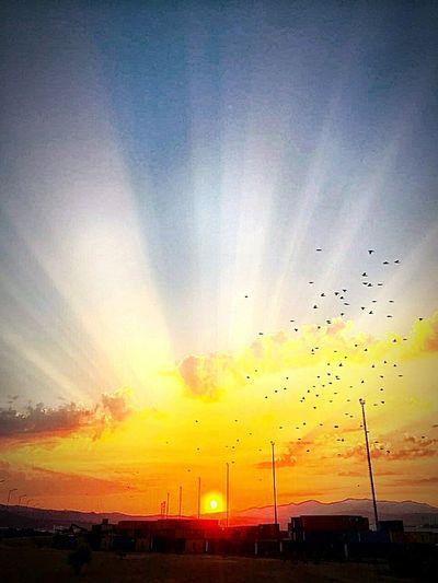 Bir akşam güneşi .... First Eyeem Photo