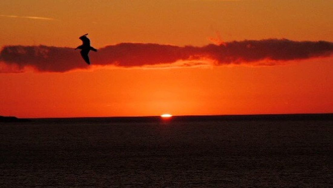 Sundown...♥ Sunset_captures Sunsetphotographs Sunset Lovers Beautiful Sunset Eye Em Nature Lover Sea And Sunset Reñaca Beach , Chile