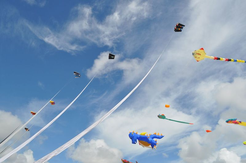 Second Acts EyeEm Selects Low Angle View Sky Cloud - Sky Multi Colored Hanging Flying Outdoors Kite Day Kite - Toy Large Group Of Objects No People Group Of Objects Blue Nature Beauty In Nature EyeEm Masterclass Kite Mid-air Kite Flying New Beginnings Kites Kite Festival