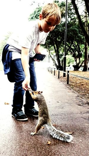 Making friends :) Full Length Casual Clothing Day People One Animal Lifestyles Young Adult Real People Standing Blond Hair Outdoors Animal Themes Nature Love Nature🌲 Animal Lover Boy Beauty Squirrels Low Angle View Mammal Animal Wildlife