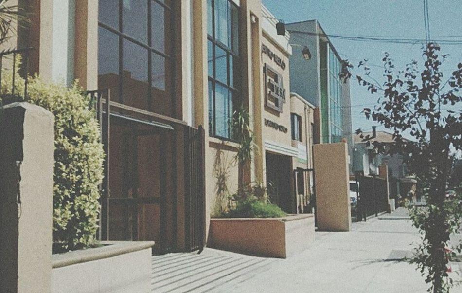 Chile Vintage Concepción