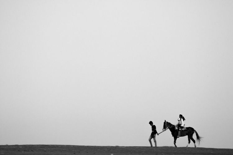 People riding on sea shore against clear sky