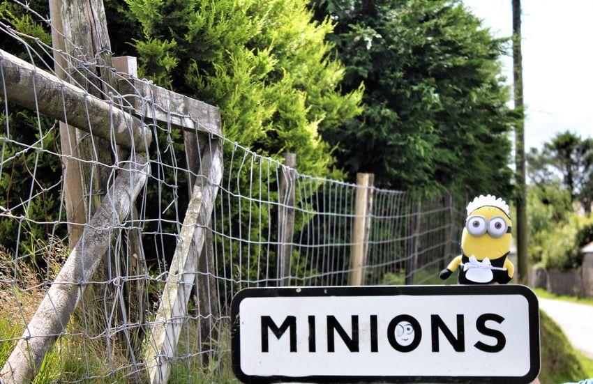 Cornwall Minions Road Signs United Kingdom