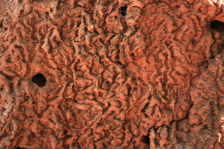 Abstract Brown Close-up Deterioration Dry Ground Texture Land Texture Old Rough Texture Textured