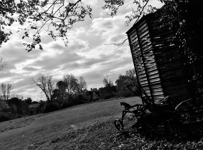 Monochrome suburbia 21: ...the somewhat hidden past. Tree Sky Cloud - Sky Outdoors No People Nature Growth Day Building Exterior Architecture Beauty In Nature Monochrome Photography Vintage Tools Decaying Building Decay
