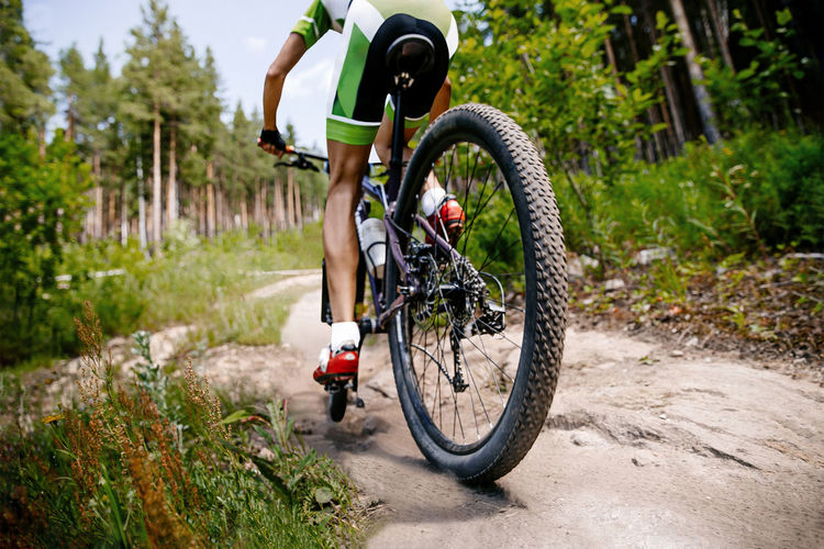 Back male cyclist riding forest trail on mountain bike