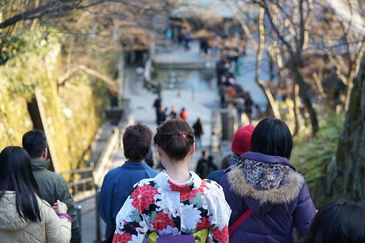 Rear View Of People On Steps At Kiyomizu-Dera