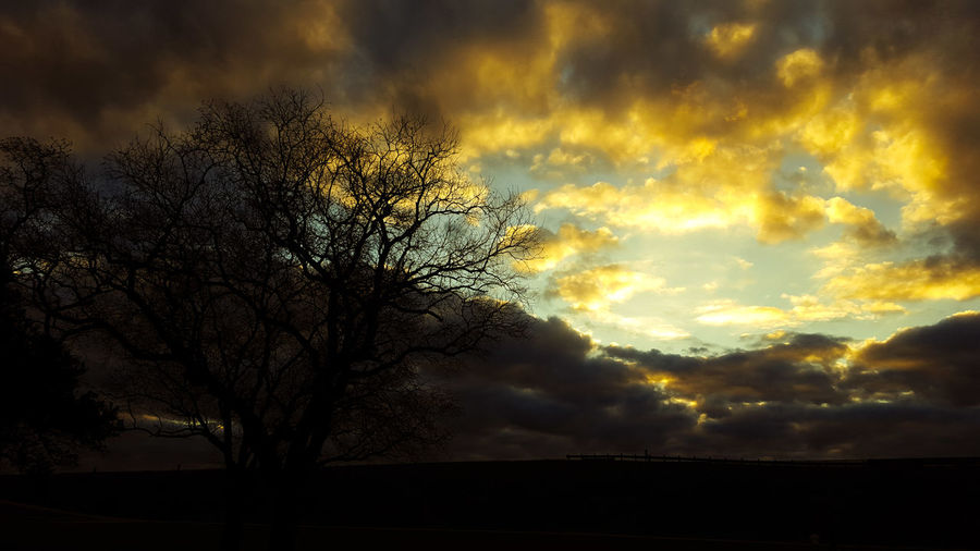 Dark and moody Texas sunset Texas Cloudy Skies City Park Dusk In The City Trees Winter The Great Outdoors