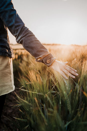 Woman in crops field against sunset Casual Clothing Cropfield Day Field Grass Growth Hand Human Body Part Human Hand Land Leisure Activity Lifestyles Nature One Person Outdoors Plant Real People Selective Focus Sky Standing Sunset