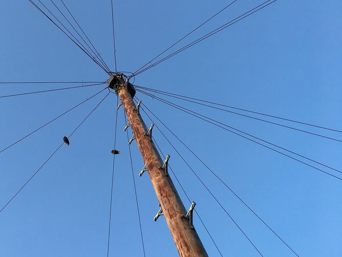 Low angle view of birds perching on electricity pylon against clear blue sky