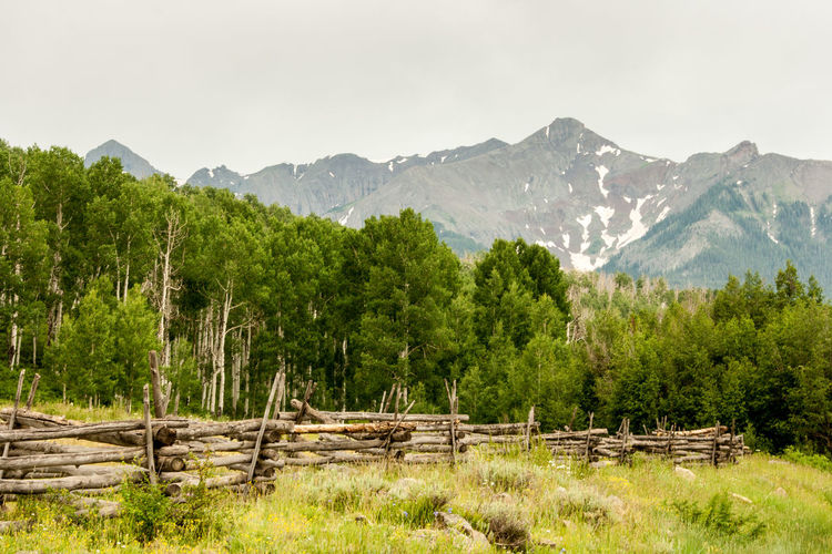Day Landscape Mountain Nature No People Outdoors Rail Fence Split Rail Fence Tree