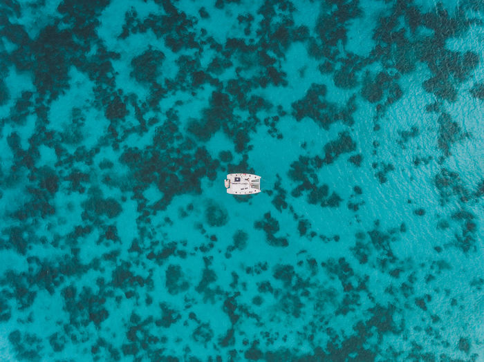 REMOTE | @LostBoyMemoirs | Drone view of a sailing catamaran like a little speck in the water against the blotchy bright turquoise sea. Shot on DJI Phantom 4 drone in Antigua while sailing around this paradise island. Edited in Adobe Lightroom. See more: Lostboymemoirs.com Aerial Drone  Dji DJI Phantom 4 Sky Porn Dronephotography Caribbean Island Paradise Vacations Antigua Remote Seascape Secluded  Turquoise Colored High Angle View Nautical Vessel Floating On Water No People Sea Life The Week on EyeEm Travel It's About The Journey