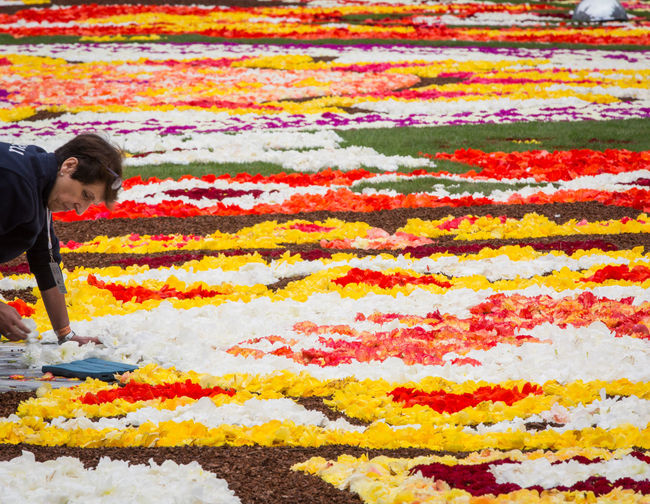 Flower carpet in Brussels 2018 Moments Of Happiness Multi Colored One Person Flower Flowering Plant Plant Adult Young Adult Yellow Beauty In Nature Nature Men Casual Clothing Abundance Day Standing Young Men Freshness Large Group Of Objects Pattern Flower Head Flower Carpet Brussels
