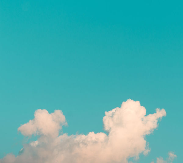 Hunting those clouds with the long lens ... Cloud - Sky Sky Beauty In Nature Low Angle View Blue Tranquility Scenics - Nature Tranquil Scene Nature No People Day Copy Space Idyllic Outdoors Backgrounds Full Frame Sunlight White Color Abstract Heaven Meteorology negative space Square Dharamsala Mcleodganj Himalayas Himachalpradesh Minimalism Minimal The Minimalist - 2019 EyeEm Awards