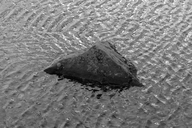 EyeEm Best Shots EyeEm Eye4photography  EyeEm Best Pics Bnw Blackandwhite Black And White Black & White Blackandwhite Photography Monochrome Water Sea Nature Close-up Outdoors Rippled Rock Water Ripples Backgrounds Abstract Beauty In Nature Nature High Angle View