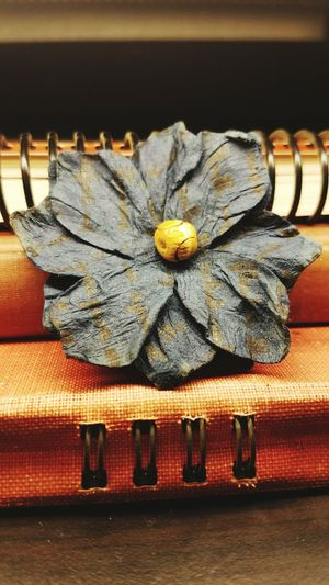 Hanging Out Taking Photos Check This Out Hello World Flower Vintage Still Art Artistic Grain Lines Books