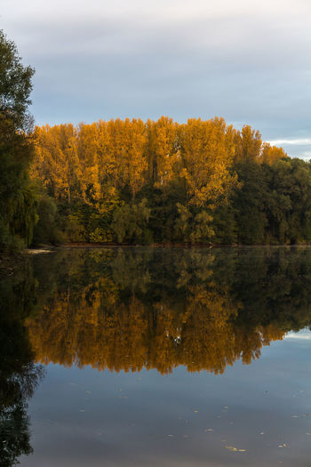 Autumn Beauty In Nature Day Forest Growth Lake Nature No People Outdoors Reflection Scenics Sky Tranquil Scene Tranquility Tree Water Waterfront