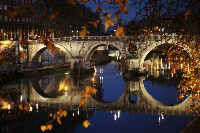 Tree Reflection Illuminated Night City Outdoors Travel Destinations Sky Water Bridge - Man Made Structure Architecture Rome Italy🇮🇹 CityTravel Close-up People History Built Structure Winter Tree Cityscape River Lungotevere Waterfront Architecture