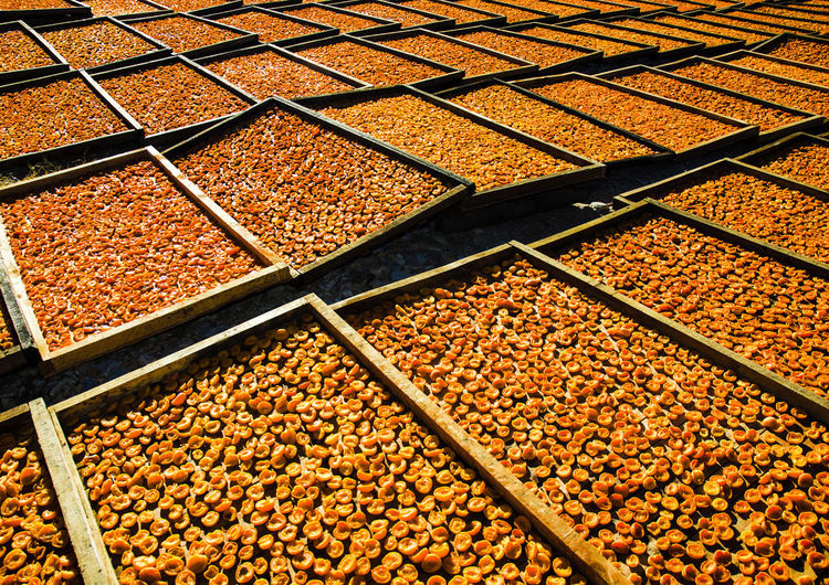 Apricots Little Karoo South Africa Sun Dried Apricots Dried Apricots Farm Produce Farm Products Orange Color