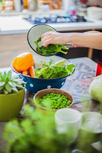 Woman cooking in kitchen with ingredients around her Adult Adults Only Arugula Bowl Close-up Day Food Food And Drink Freshness Healthy Eating Healthy Lifestyle Human Hand Indoors  Ingredient Lettuce Mixing One Person People Salad Salad Bowl Vegetable