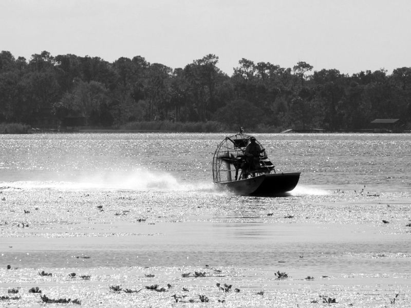 Airboat One Person Riding River Riverscape Trees Motion From A Distance Silhouette Black And White Photography