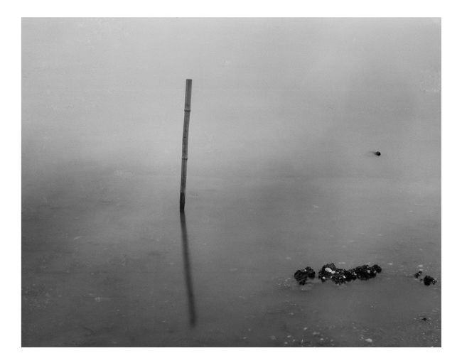 Black & White Black And White Blackandwhite Close-up Day Korea Lake Landscape No People Outdoors