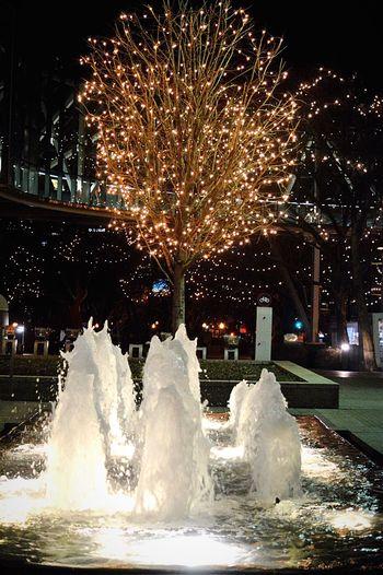Night Celebration City Outdoors Arts Culture And Entertainment Illuminated Motion Tree Water Crown Center Plaza, Kansas City, MO Kansas City Beautiful Fountains Fountain