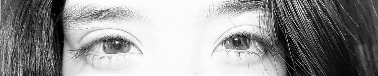 Crying Eye Eyes Human Face I'm Fine  Sad Sad Eyes